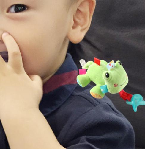 Hot Animal Baby Soothie Pacifier